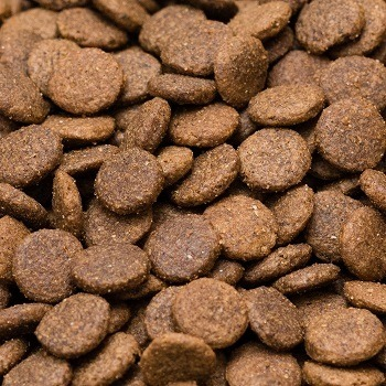 Grain Free Adult 55% Chicken, Sweet Potato & Herbs Complete Dry Dog Food